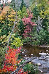 The Ausable River in early Fall, east of Lake Placid, New York.