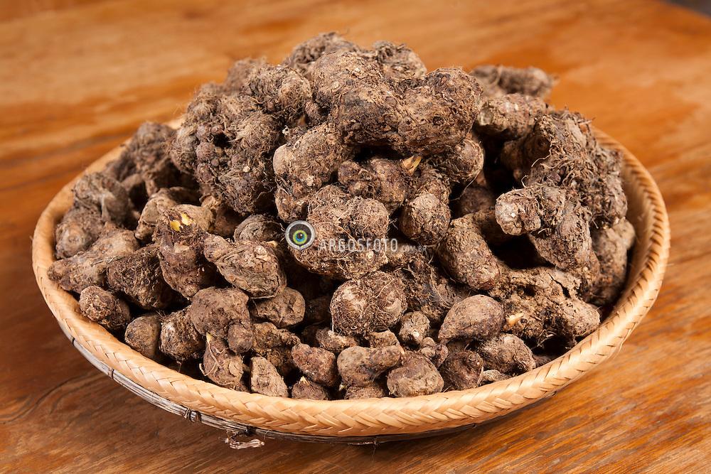 Rizomas de mangara ( Xanthosoma mafaffa Schott ), mais conhecido como mangarito, que podem ser apreciados em pratos do Restaurante Tordeslhas.