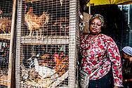 LAGOS nigeria dagelijks leven op straat in. nigeria  <br /> Koningin Maxima bezoekt Nigeria voor toegang tot financi&euml;le diensten Koningin M&aacute;xima bezoekt van maandagavond 30 oktober tot en met donderdag 2 november de Federale Republiek Nigeria in haar functie van speciale pleitbezorger van de secretaris-generaal van de Verenigde Naties voor inclusieve financiering voor ontwikkeling. Nigeria heeft sinds 2012 een Nationale Strategie voor Inclusieve Financiering voor betaalbare en goede toegang tot financi&euml;le diensten. Met als doel bij te dragen aan de economische ontwikkeling van de bevolking.<br /> Koningin Maxima was in 2012 in haar VN functie aanwezig bij de lancering van deze nationale strategie Het huidige bezoek richt zich met name op de mogelijkheden om het proces van verbetering van toegang tot financi&euml;le diensten te versnellen. Zowel de centrale als de decentrale overheden hebben hierin een belangrijke regierol. Daarnaast bieden uitbreiding van het aantal bankagentschappen en digitalisering van financi&euml;le diensten goede mogelijkheden om meer mensen aan te laten sluiten op formele financi&euml;le diensten. Volgens cijfers van de Nigeriaanse financi&euml;le ontwikkelingsorganisatie EFInA (Enhancing Financial Innovation &amp; Access) zijn er regionaal grote verschillen. Gemiddeld heeft 48,6% van de volwassenen in het land toegang tot financi&euml;le diensten.<br /> In het meer afgelegen noordwesten is dit echter slechts 24%, terwijl in het zuiden 78% van de bevolking toegang heeft tot een bank- of spaarrekening, leningen, verzekeringen en pensioenen. ROBIN UTRECHT