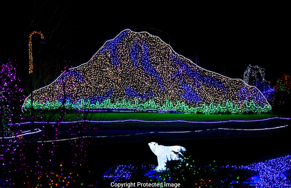 Zoolights at Point Defiance Zoo and Aquarium in Tacoma on Thursday, Nov. 14, 2013. (Photo/John Froschauer)