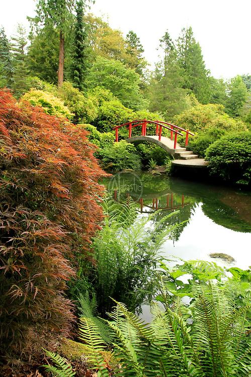 Kubota Garden in Rainier Beach, South Seattle.