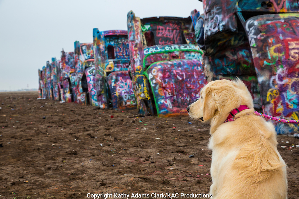 "On Interstate 40 west of Amarillo, there is a public art installation called ""Cadillac Ranch."" An art group called Ant Farm, consisting of  Chip Lord, Hudson Marquez and Doug Michels created the installation in 1974."