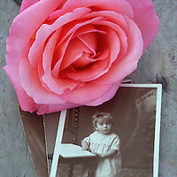 Vintage sepia studio photo of young child in Edwardian smock standing at a chair and with pink rose lying on top
