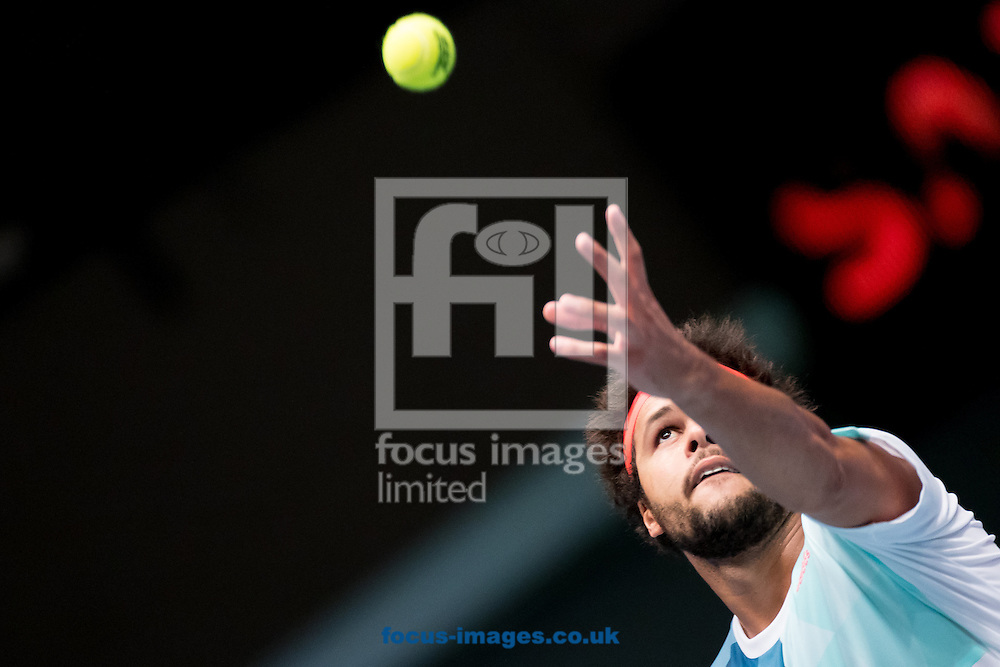 Jo-Wilfred Tsonga during the final of the Erste Bank Open at Wiener Stadthalle, Vienna, Austria.<br /> Picture by EXPA Pictures/Focus Images Ltd 07814482222<br /> 30/10/2016<br /> *** UK &amp; IRELAND ONLY ***<br /> EXPA-PUC-161030-0392.jpg