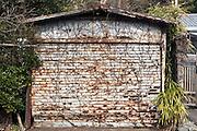 old metal rusty garage door with roots overgrowth