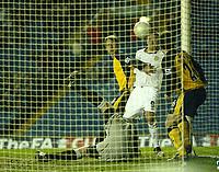 Photo: Aidan Ellis.<br /> Leeds United v Wigan Athletic. The FA Cup. 17/01/2006.<br /> Leeds David Healy scores the equaliser