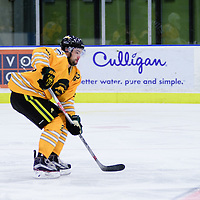 3rd year forward Colton Sparrow (22) of the Regina Cougars in action during the Men's Hockey Home Game on November 5 at Co-operators arena. Credit: Arthur Ward/Arthur Images