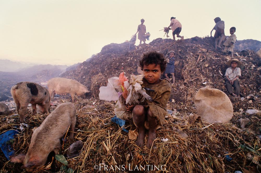 Homeless children scavenging at dump, Antananarivo, Central Madagascar