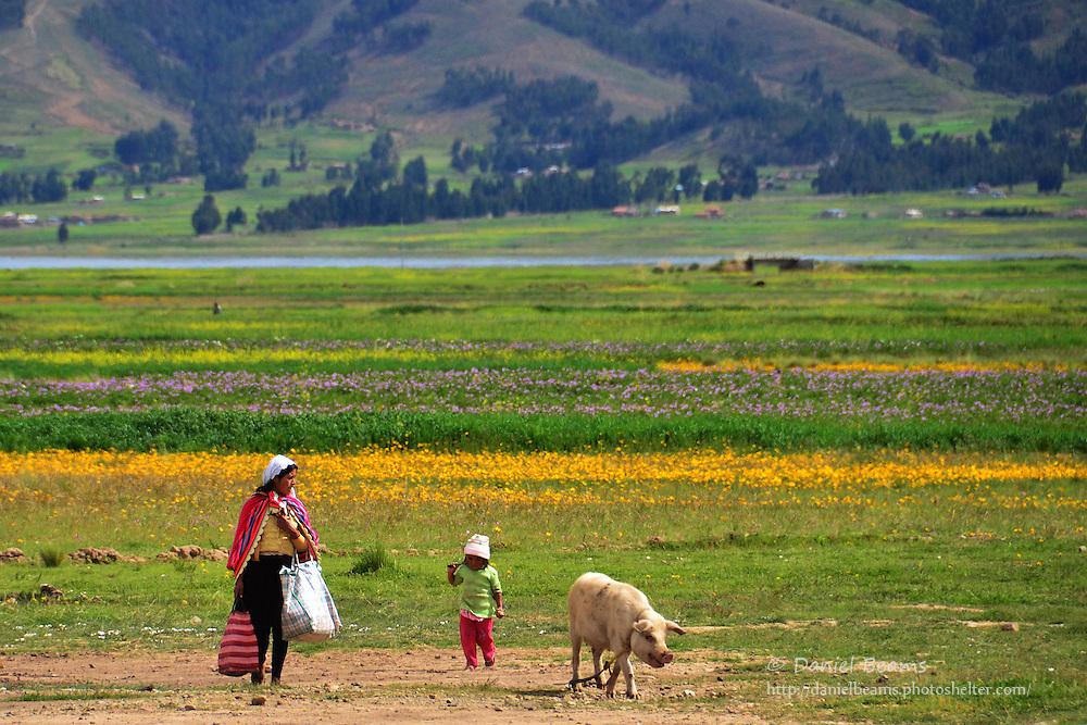 Quechua woman with child and pig near Vacas, Cochabamba, Bolivia