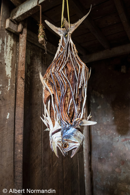 Dried fish hanging at Sittwe Fish Market, Sittwe