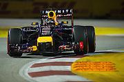 September 18-21, 2014 : Singapore Formula One Grand Prix - Sebastian Vettel (GER), Red Bull-Renault