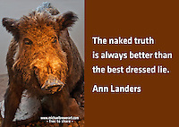 Quote:  The naked truth is alway better than the best dressed lie.  By Ann Landers.  Meme.