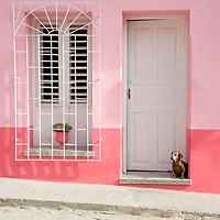 Dog in a doorway in Trinidad, Cuba