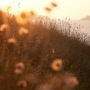 UK: southwest coast