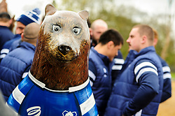 General views as the Wild Place Project welcomes the Bristol Bears to announce it's Bear Trail featuring a Bristol Bears decorated bear - Ryan Hiscott/JMP - 03/04/2019 - SPORT - Wild Place Project - Bristol, England - Bristol Bears launch Bear Trail at Wild Place Project