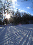 Skiing Trails in the Gatineau Park in Canada, January 9, 2011.