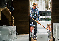 Rocky wold Deephaven Camps annual Ice Harvest event.  ©2018 Karen Bobotas Photographer