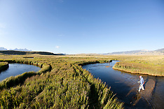 Flat Creek, WY Fly Fishing Photos - Stock images