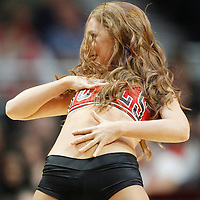24 March 2012: Luvabull .Lauren Murrell performs during the Chicago Bulls 102-101 victory in overtime over the Toronto Raptors at the United Center, Chicago, Illinois, USA.