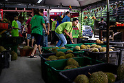 Workers arrange baskets of durian fruits at Durian Kaki, a roadside fruit stall owned by Tan Eow Chong and his family in Bayan Lepas, Pulau Pinang, Malaysia on Sunday, June 16th, 2019. Tan Eow Chong is an award-winning durian farmer famed for his Musang King variety, and last year exported 1000 tons of the fruit to China from his family-run durian empire, expanding from an 80 acre farm to 1000 acres.  Photo by Suzanne Lee/PANOS for Los Angeles Times