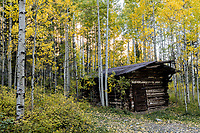 Abandoned cabin near Ames, Colorado.