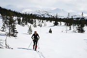 Cross country skiing in the Skarvene and Roltdalen national park. The mountain Fongen in the back.