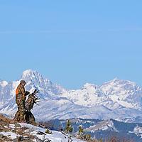 muledeer hunter in camo gun antlers snow covered rocky mountains