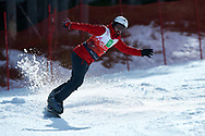 """Schladming, Austria - 2017 March 21: Mario Horn from Austria (7) competes in Snowboarding Competition while Special Olympics World Winter Games Austria 2017 on the """"Sepp-Walcher-Downhill"""" (Slope 32) near the """"Tauernalm"""" in Rohrmoos on March 21, 2017 in Schladming, Austria.<br /> <br /> Mandatory credit:<br /> Photo by © Adam Nurkiewicz / Mediasport<br /> <br /> Adam Nurkiewicz declares that he has no rights to the image of people at the photographs of his authorship.<br /> <br /> Picture also available in RAW (NEF) or TIFF format on special request.<br /> <br /> Any editorial, commercial or promotional use requires written permission from the author of image.<br /> <br /> Image can be used in the press when the method of use and the signature does not hurt people on the picture."""
