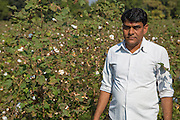 A portrait of Shantilal on his organic cotton farm in Madhya Pradesh, India.