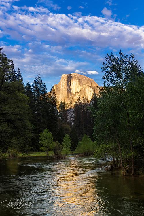 Evening light on Half Dome above the Merced River, Yosemite National Park, California USA