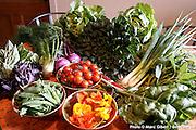 Les légumes des jardins d'ambroisie. , , Québec, Canada, 2008, 07, 03, © Photo Marc Gibert / adecom.ca