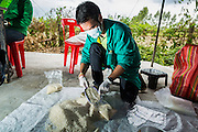 """08 JULY 2014 - WANG NAM SAP, SUPHAN BURI, THAILAND: An agricultural officials weighs and inspects rice at a rice warehouse in Wang Nam Sap, Suphan Buri province. Representatives of the Thai ruling junta have started inspecting stocks of rice bought by the ousted civilian government following the 2012 and 2013 rice harvests. The government of ousted former Prime Minister Yingluck Shinawatra bought up thousands of tons of rice from farmers at above market prices in one of its most controversial populist policies. The alleged mismanagement of the """"rice pledging scheme,"""" as it was called, was one of the factors that lead to the May 2014 coup that ousted the government. According to officials doing the inspections found rotten and weevil-infested grain, along with evidence that large stocks were replaced with old or inferior grades.     PHOTO BY JACK KURTZ"""