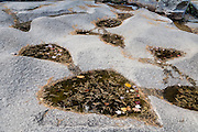 Heart shaped pools. Diana's Baths are a collection of beautiful pools and waterfalls descending 75 feet (23 m) vertically along Lucy Brook on North Moat Mountain, in White Mountain National Forest, New Hampshire, USA. The easy 1.2-mile roundtrip walk starts at the Diana's Baths parking lot on West Side Road in Bartlett, near North Conway. An 1800s sawmill operation here was abandoned by the Lucy family in the 1940s then converted into a historic site protected by the US Forest Service. The White Mountains (a range in the northern Appalachian Mountains) cover a quarter of the state of New Hampshire. Leaf peepers enjoy the peak of autumn foliage around the first week of October.