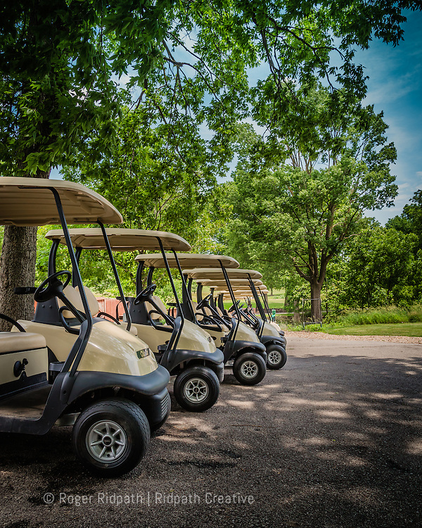row of electric golf carts hodge park