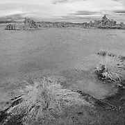 Mono Lake Shoreline - Incoming Storm - Black & White
