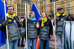 Protesters from The Limbo Project - EU citizens with family connections to British citizens or who reside in the UK and British citizens who live in the EU highlight the uncertainty of their futures in the countries they now call home. London, January 15 2019.