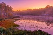 Dawn light on marsh adjacent Lake Laurentian. Lake Laurentian Conservation Area.<br />Sudbury<br />Ontario<br />Canada