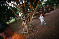A truck driver waits for his truck, loaded down with lumber, to be fixed near Marcelândia, in Mato Grosso state, in Brazil on April 6, 2008. The growth of the soybean and cattle business in Mato Grosso state came at the expense of the dense forests that at one time were prevalent in the region. (Photo/Scott Dalton).