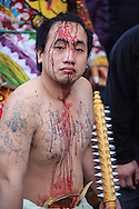A ji tong or spriit medium covered in blood and holding a spiked club. The medium becomes possessed by god and inflicts the wounds upon himself.