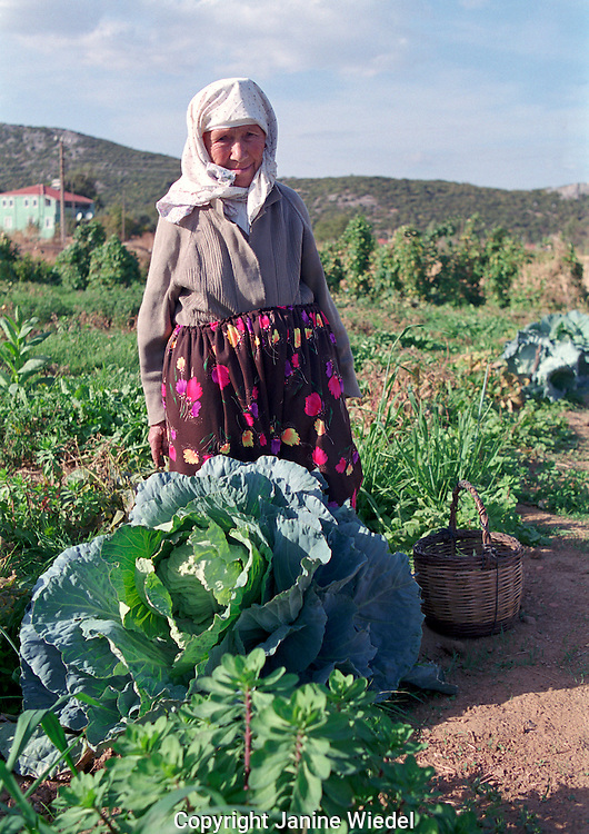 Older woman tending her garden of cabbages and other vegetable on a farm in remote Turkish village near Akyaka in South Western Turkey.