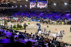 Overview<br /> Jumping Mechelen 2019<br /> © Hippo Foto - Dirk Caremans<br />  29/12/2019