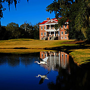 """Photo by David Peterson13USA, Des Moines, Ia.  Photo by David Peterson.  Photo by David Peterson - Drayton Hall Plantation, near Charleston, South Carolina,.  Photo by David Peterson - Drayton Hall Plantation, near Charleston, South Carolina, - Drayton Hall Plantation, near Charleston, South Carolina,  is an 18th century plantation located on the Ashley River in """"Lowcountry"""".  It's an outstanding example of Palladian architecture in North America and the only plantation house on the Ashley River to survive intact through both the Revolutionary and Civil wars.  The house was begun in 1738 and completed in 1742.  .  Photo by David Peterson"""