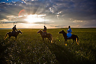 Three Mongolian horsemen in traditional costume on their horses in the grasslands of Inner Mongolia at sunset.  They are carrying their Uurga (herding pole), Inner Mongolia, China.