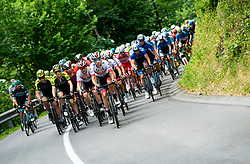 Peloton during 3rd Stage of 26th Tour of Slovenia 2019 cycling race between Zalec and Idrija (169,8 km), on June 21, 2019 in Slovenia. Photo by Vid Ponikvar / Sportida