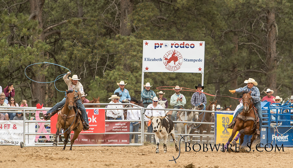 Header Jay Tittel and heeler Richard Durham make their team roping run during the third performance of the Elizabeth Stampede on Sunday, June 3, 2018.