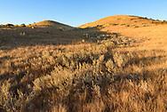 Before leaving Grasslands, I hiked the 7 mile (13km) Broken Hills trail at sunrise.