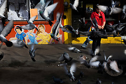 Pigeons fly around a young woman on the streets of Nogales. Many Mexicans dream of a better life, of escaping the violence and poverty in their country, and heading north to the US.