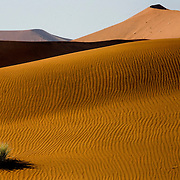 Hike along the dune ridges in the Dead Vlei area of Sossusvlei park. Namibia boasts the world?s oldest and largest sand dunes, extending for 400 miles along the coast and more than 80 miles inland. July 17, 2008. Photo by Evelyn Hockstein for The New York Times.
