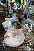 Chatuchak Sunday Market. Pet shops selling baby dogs. Treating the little buggers with dog shampoo.