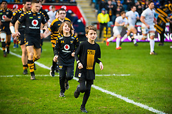 Mascots - Mandatory by-line: Dougie Allward/JMP - 18/01/2020 - RUGBY - Ricoh Arena - Coventry, England - Wasps v Bordeaux-Begles - European Rugby Challenge Cup